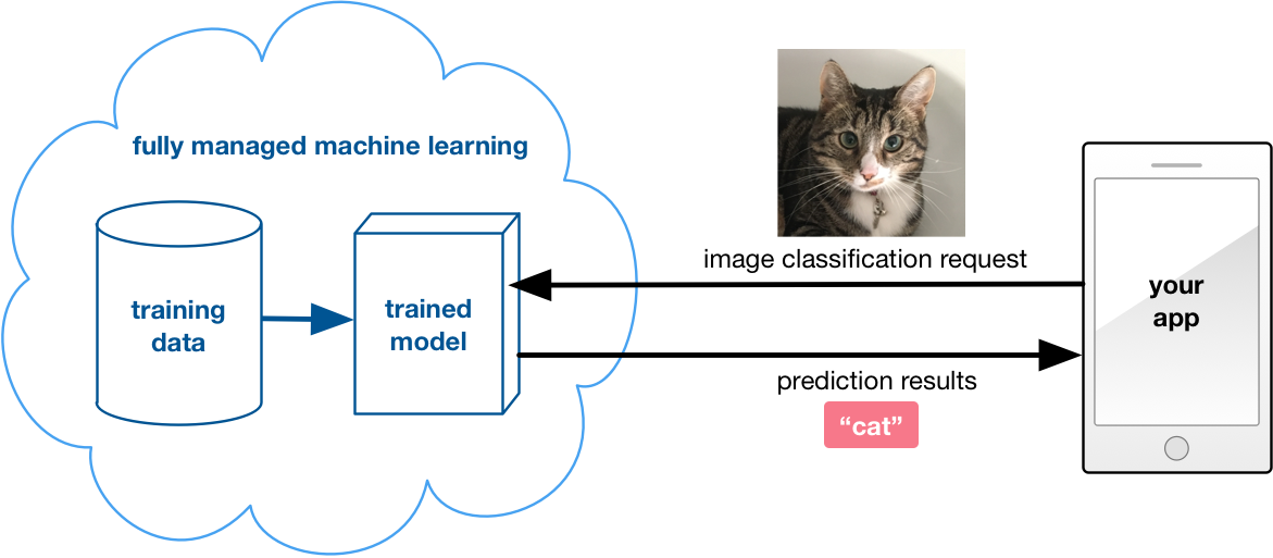 Machine Learning On Mobile On The Device Or In The Cloud