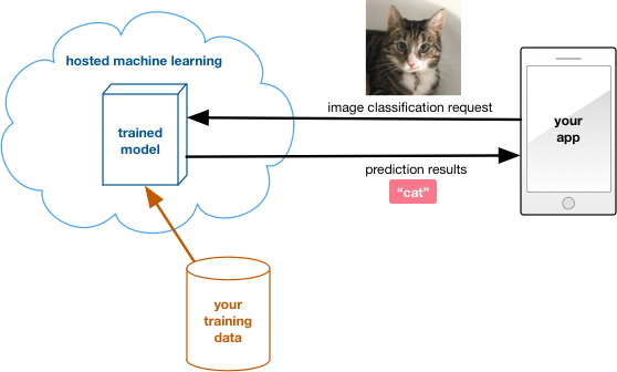 Hosted machine learning in the cloud