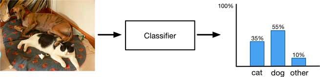 图像分类器如何处理多个对象